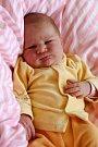 SOFIE MIKOVÁ se poprvé rozkřičela v neděli 17. dubna v 4.15 hodin. Při narození vážila 3 700 gramů a měřila 52 centimetrů. Z malé Sofinky se radují doma v Chebu sourozenci, maminka Květuše a tatínek Marcel.