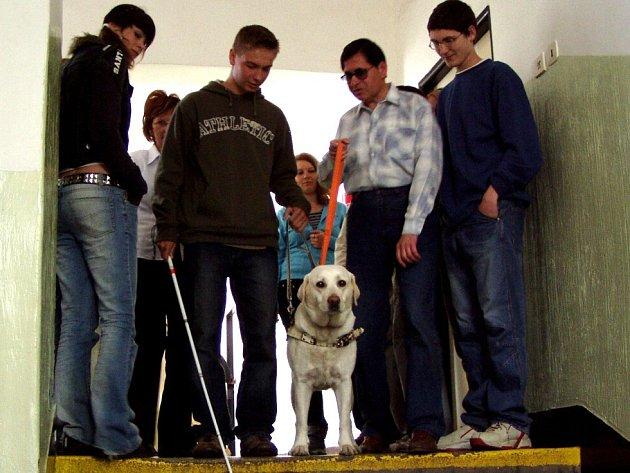 Studenti chebské střední školy si vyzkoušeli chůzi ze schodů se slepeckým psem