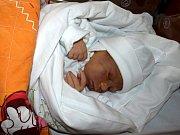 JULIE HARANTOVÁ přišla na svět v úterý 11. listopadu v 9.05 hodin. Při narození vážila 3310 gramů a měřila 49 centimetrů. V Chebu se na návrat maminky Jarmily a malé Jůlinky těší sedmiletý Alexandr a tatínek Radek.