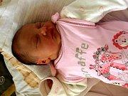 MARTINA ČERVENKOVÁ přišla na svět v neděli 9. listopadu v 1.30 hodin. Při narození vážila 3060 gramů a měřila 50 centimetrů. Tatínek Lukáš s tříletou dcerkou Verunkou se doma v Chebu těší na příjezd maminky Zdenky a Malé Martinky.