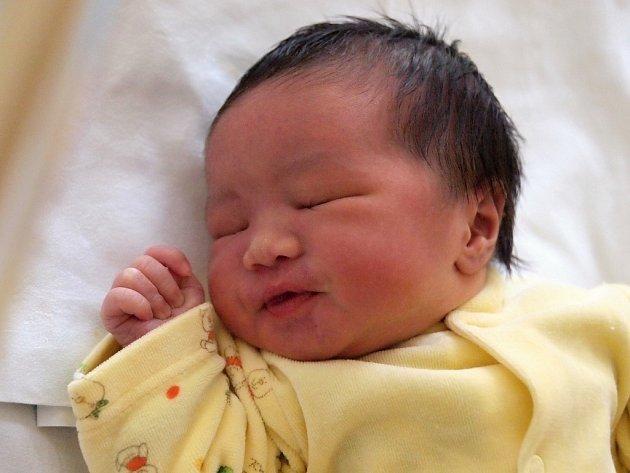 BAO LE HOANG GIA se narodil v sobotu 11. ledna. Při narození vážil 3 500 gramů a měřil 49 centimetrů. Doma v Chebu se z malého brášky raduje sestřička Bao Ngoc, maminka Nga a tatínek Kien.