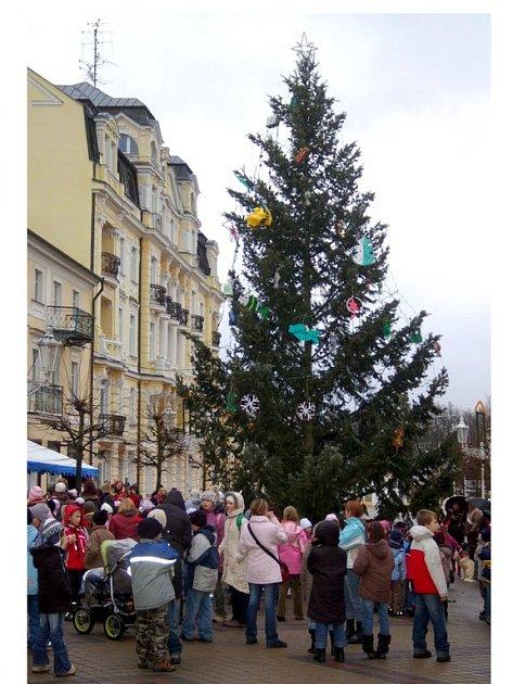 Vánoční strom ve Františkových  Lázních