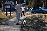 Jarní procházka po naučné stezce na Kladské u Mariánských Lázní