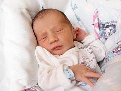 RADEK FIALA přišel na svět ve středu 10. prosince v 8.51 hodin. Při narození vážil 3 210 gramů a měřil 50 centimetrů. Z malého Radečka se raduje doma v Chebu sestřička Nela, maminka Marcela a tatínek Radek.
