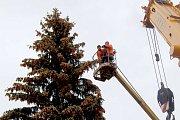 Vánoční strom v Karlovarském kraji už v těchto dnech ozdobil chebské náměstí.