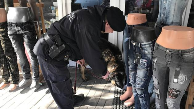 Hned dvě velké akce zaměřené na prevenci drogové kriminality připravili policisté v Karlovarském kraji. V uplynulých dnech zamířili do tržnic ve Svatém Kříži na Chebsku a do Potůčků na Karlovarsku.