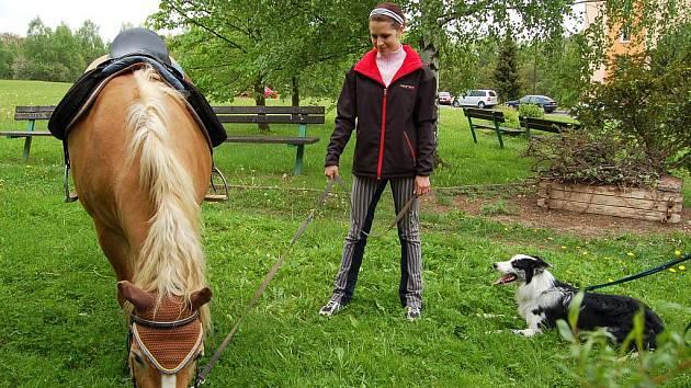 Domov pro seniory v Chebu využil chvíle, kdy nepršelo, a pro své klienty uspořádali jeho pracovníci zajímavou akci spojenou s grilováním a návštěvou canisterapeutických psů Jacka a Cyrila a hipoterapeutického koně Falka.
