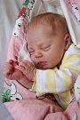 VERONIKA ŠTĚRBOVÁ se poprvé rozkřičela v pondělí 9. října v 16. 46 hodin. Na svět přišla s váhou 2 630 gramů. Doma v Mariánských Lázních se z malé Verunky radují sourozenci Jiřík, Monika a Tomáš, maminka Lenka a tatínek Roman.