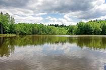Štítarský rybník je název Evropsky významné lokality vyhlášené v roce 2009.