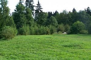 Pozemek, který v současné chvíli ani zdaleka nepřipomíná dětské hřiště, se na jaře příštího roku změní. Poustka získala grant na výstavbu multifunkční plochy.