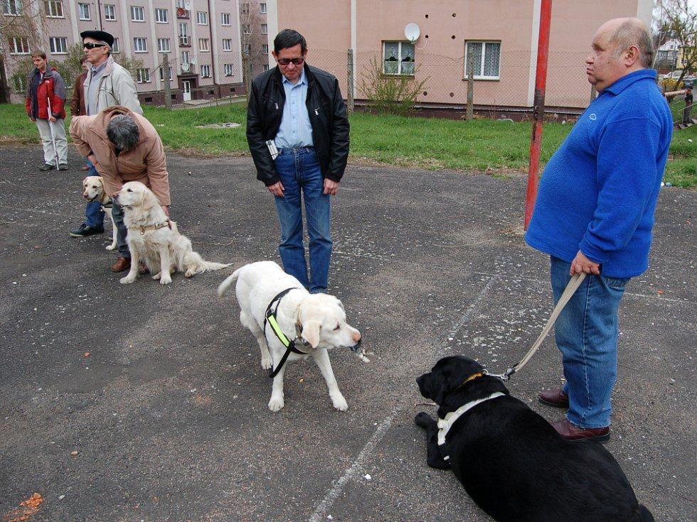 INSTRUKTORKY si prověřovaly schopnosti vodicích psů. Jedním z úkolů bylo například aportování.