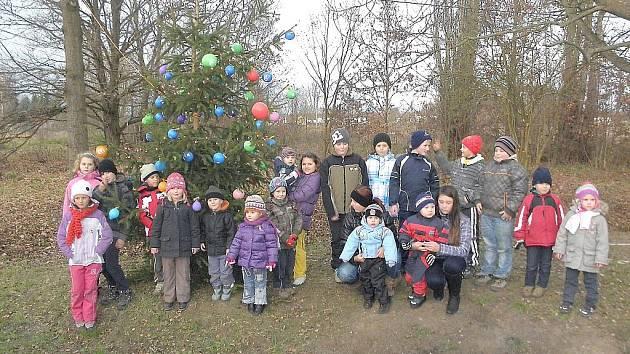 VÁNOČNÍ STROMEČEK rozsvítili také v Okrouhlé. Děti i dospělí si nejprve zazpívali vánoční koledy a poté pověsili na stromeček netradiční ozdoby se svými přáními.