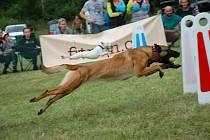 Říká se, že pes je nejlepší přátel člověka. Své o tom ví o trenéři psích mazlíčků, kteří se svým psům věnují naplno a společně se trénují v oblíbené psí štafetě Flyball.