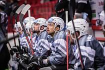 HC Energie Karlovy Vary - Ice Tigers Norimberk
