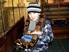 Výstava drobného zvířectva v Aši přilákala spoustu nadšenců