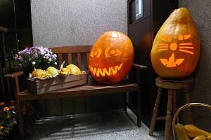 Halloweenská výzdoba před panelákem v Plesné.