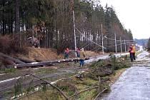 Orkán Kyrill řádil v lednu 2007 také na Chebsku. Na snímku stržené trolejbusové vedení mezi Mariánskými Lázněmi a Velkou Hleďsebí