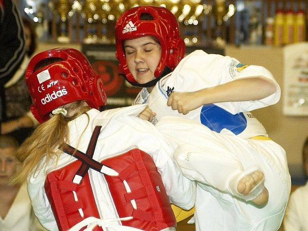 Evropský pohár dětí a mládeže v shinkyokushinkai karate ve Skalné