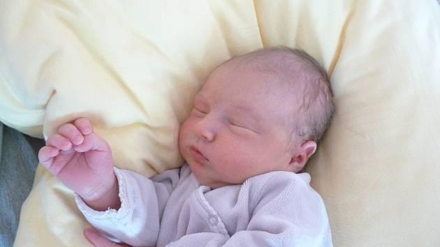 ELLA (3,45 kg, 49 cm) se narodila 19. 11. ve 20:21 ve Fakultní nemocnici v Plzni. Na světě ji přivítali Mária Straková a tatínek Tomáš Houžvička z Mariánských Lázní. Doma se na sestřičku těší Tomášek (2 a tři čtvrtě).