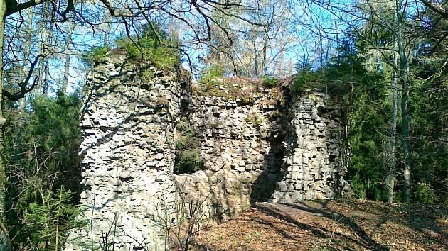 Nad městem Lázně Kynžvart se mezi Šibeničním vrchem a Špičákem vypíná Hradní vrch se zříceninou středověkého hradu.