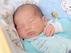 JAN BALGA bude mít v rodném listu datum narození úterý 28. května v osm hodin ráno. Při narození vážil 3 400 gramů a měřil 51 centimetrů. Z malého Jeníčka se raduje doma v Chebu bráška Jakoubek spolu s maminkou Květou a tatínkem Janem.