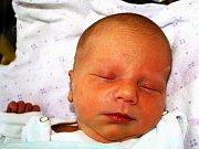 SOFIE LOUČKOVÁ se narodila v pátek 11. prosince v 16.50 hodin. Při narození vážila 2800 gramů a měřila 49 centimetrů. Maminka Nikola a s ní celá rodina se z malé Sofinky radují a těší se, až budou všichni doma v Mariánských Lázních.