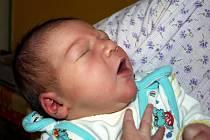 VERONIKA ŠVÁBOVÁ z Chebu se narodila v sobotu 12. prosince ve 3.03 hodiny. Při narození vážila 3420 gramů a měřila 50 centimetrů. Z malé Verunky se radují maminka Petra, tatínek Vlastimil a tříletý Jakoubek, který třetí narozeniny oslavil 13. prosince.