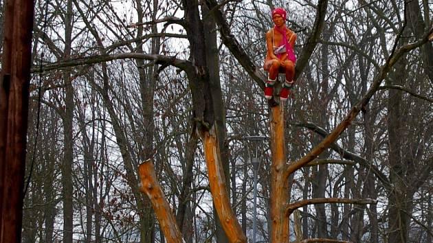 SOCHU NA STROMĚ vedle Hradebního příkopu mají lidé rádi, dokonce ji i oblékli před blížící se zimou.