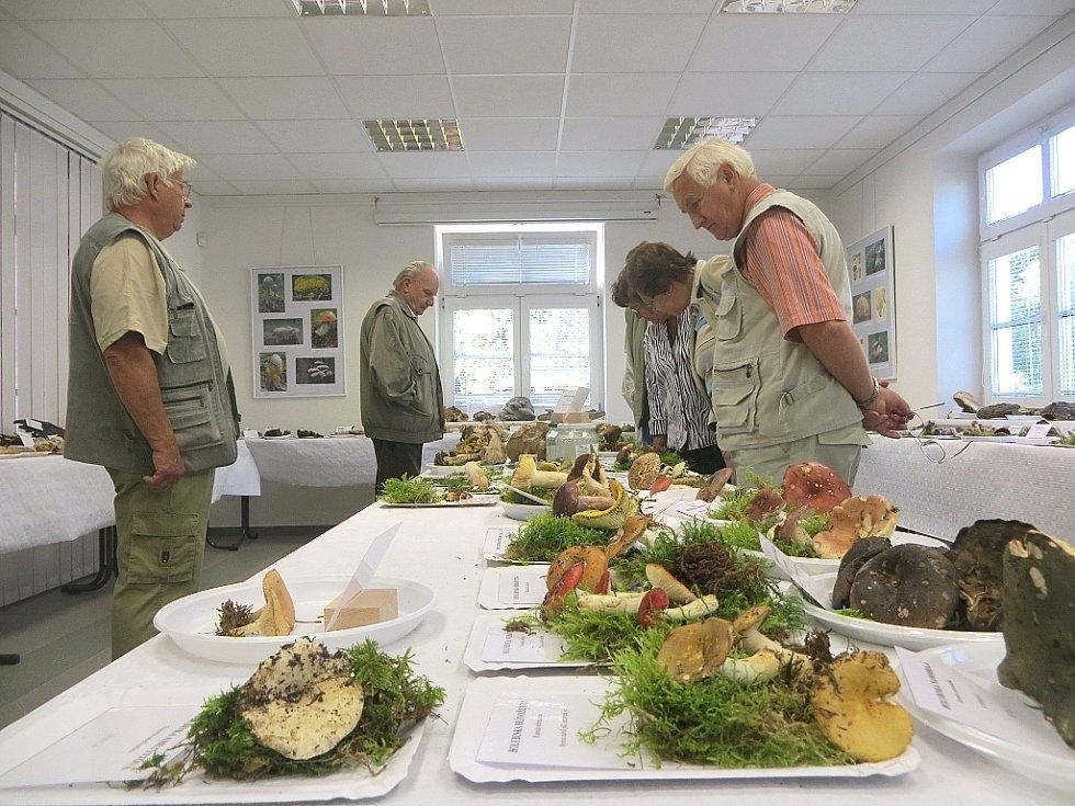 Téměř tisíc lidí zavítalo o víkendu na výstavu hub do Mariánských Lázní.