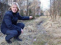 STAROSTA PLESNÉ Petr Schaller ukázal, kudy povede první část nové silnice.