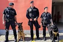 V ulicích města Chebu je možné potkat služební psi městské policie se svými psovody.