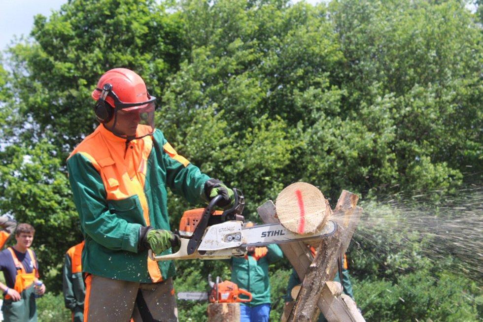 PRAPILA. Srandamač dřevorubců se v Pramenech uskutečnil už potřetí. Adepti na vítěze museli ukázat například i to, jak si poradí s odvětvováním.