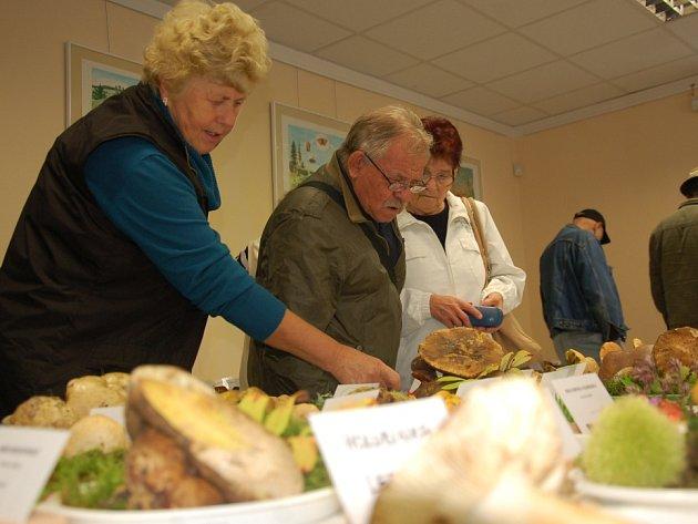 TŘI STA druhů hub si mohli dospělí i děti prohlédnout v rámci výstavy v Mariánských Lázních.