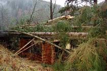 Větrná smršť poničila bečovskou botanickou zahradu