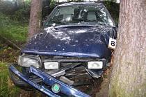 Auto sjelo ze silnice a postupně narazilo do pěti stromů.