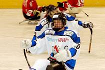 Sharks K. Vary - Kohouti Olomouc 6:1