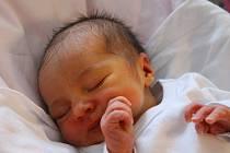 Julie Kverková z Karlových Varů se narodila v karlovarské porodnici 17. února 2020.