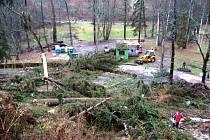Takhle vypadala bečovská botanická zahrada těsně po větrné smršti v pondělí 5. prosince 2011.