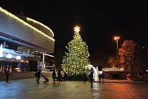 Vánoční strom v Karlových Varech před Thermalem.