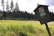Boží Dar uzavřel přístupy do lesů kvůli invazi houbařů.