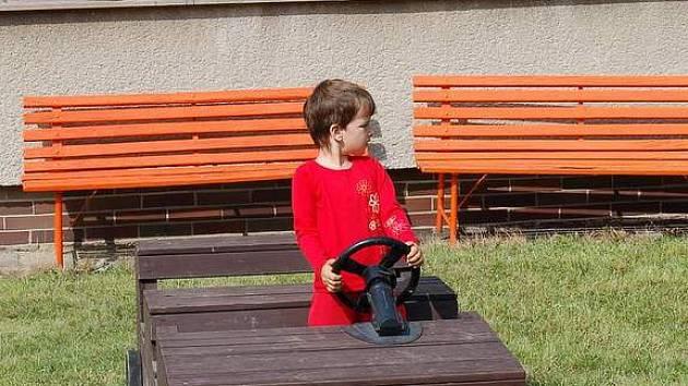 Moderní dětská hřiště musí vyhovovat přísným hygienickým normám. Většina z nich je také oplocena. Zamezuje se tak například pohybu zvířat po hřištích.