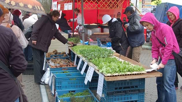 Farmářské trhy u tržnice v Karlových Varech.