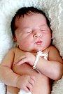 Lukášek Šťastný ze Smolných Pecí se narodil 3. 1. 2015
