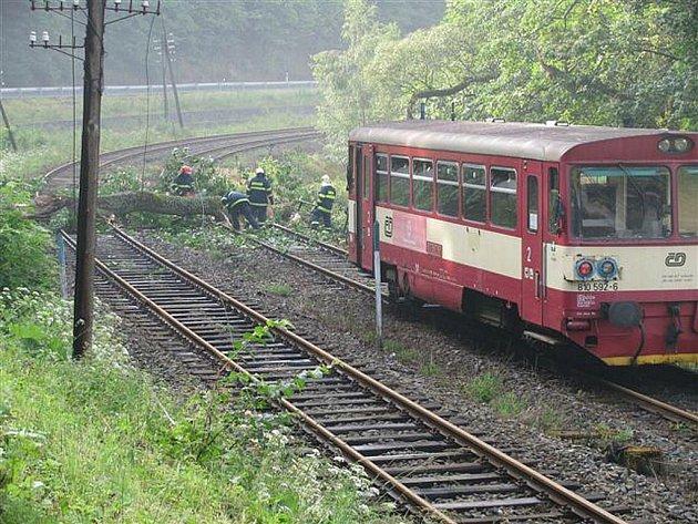 Přibližně hodinové přerušení provozu na trati mezi Mariánskými Lázněmi a Karlovými Vary si vyžádala obří větev, respektive část stromu, která spadla do kolejiště nedaleko Bečova.