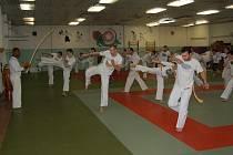 Vyznavači bojového umění capoeira měli o víkendu jedinečnou možnost zacvičit si pod vedením jednoho z nejlepších bojovníků planety. Estacio Ferreira da Silva se sám aktivně zapojil do praktických ukázek tohoto bojového umění