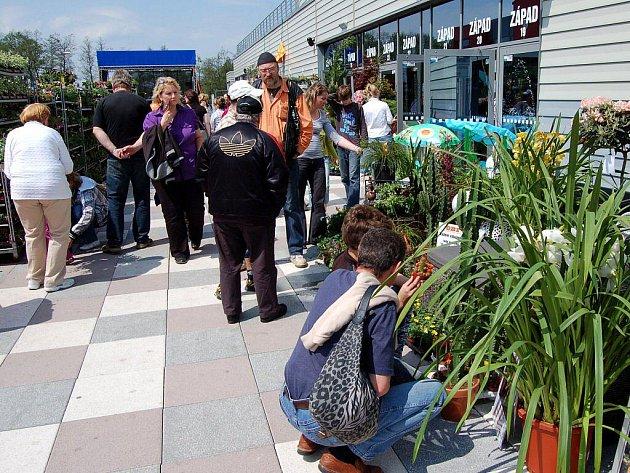 Výstava Flores - sobota 14. května