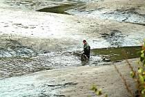 NĚKTERÉ vodní plochy Vojenských lesů a statků slouží také pro chov ryb. Oblíbenou akcí bývá třeba výlov rybníka Krásný.