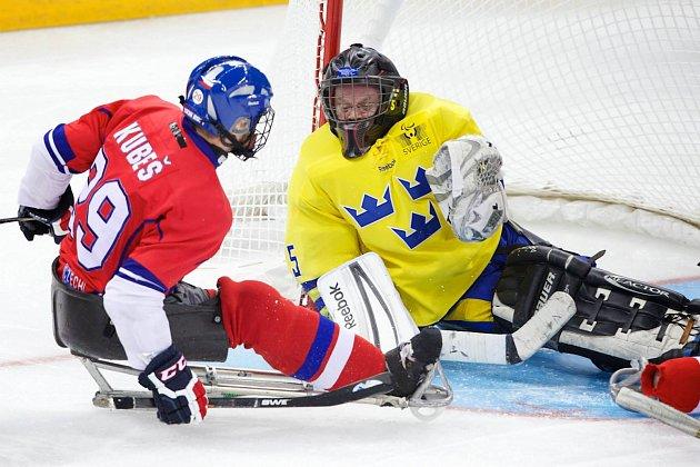 Paralympiáda: Česko - Švédsko 2:1 po sn