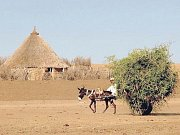 Tradiční tanec Kambala.