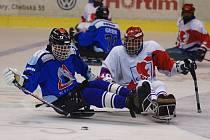 ZAPOMNĚLI NA NĚ. V původním projektu multifunkční haly se na handicapované sportovce zapomnělo. Nyní za postižené hokejisty chtějí lobbovat až v USA karlovarští politici.